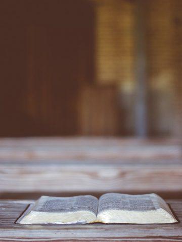antique, book, read